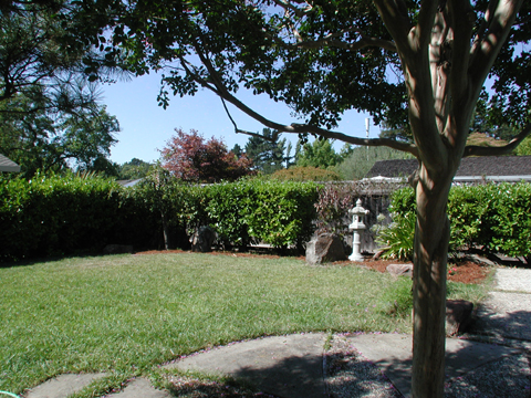 349 THARP DR, MORAGA, CA 94556  Photo 5